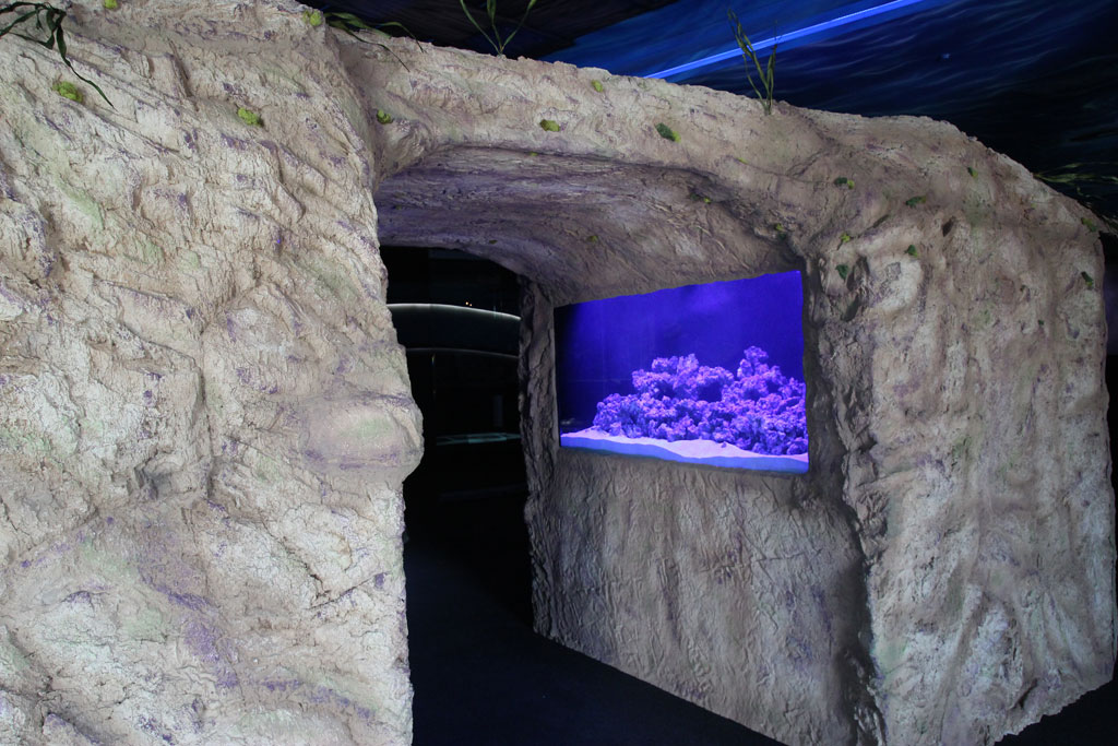 Themed Aquarium