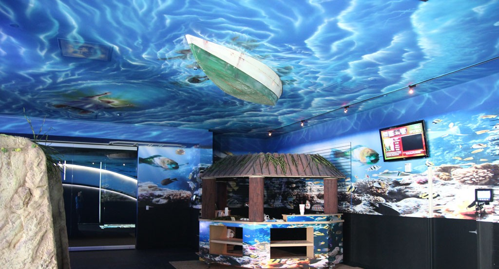 Themed Environment Underwater